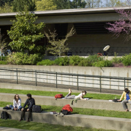 The amphitheatre outside the Legal Resource center provides a central area to relax, study and play.