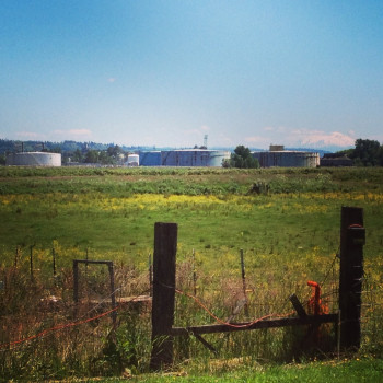 View of the Clatskanie oil terminal from neighboring farm property.