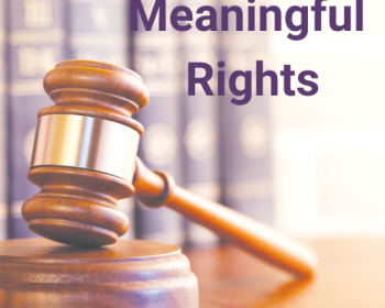 NCVLI 2020 Annual Report - Meaningful Rights