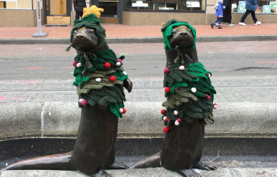 Otters keep warm in winter with their yarnbomb sweaters.