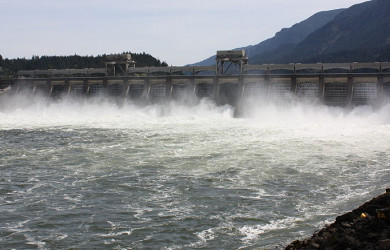 Bonneville Dam spillway–photo by Walter Siegmund