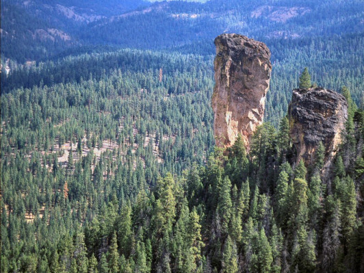<p> The forest is loved for its canyons and soaring pinnacles including a pair of volcanic plugs called the <em>Twin Pillars</em>.</p>