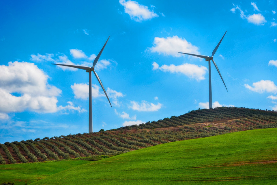 Green Energy Institute Law School Lewis Amp Clark